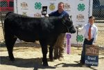 J.W. Silcox stands with auction judge Josh Dallin and his Grand Champion Steer. Silcox earned nearly $8,500 from the sale or about $6.50 per pound.