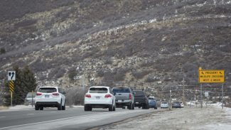 Park City collision between driver and moose reported on S.R. 224