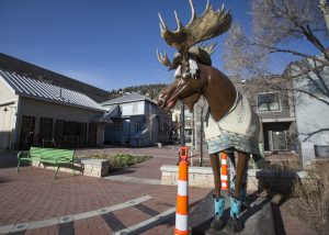 'Loosey the Moose' returns to Park City, and selfies could rack up quickly