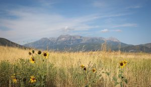 Beyond Park City: Summer activities across Utah without hitting the national parks