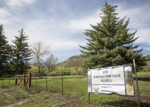 Utah Open Lands secures funds to finalize Snow Ranch Pasture deal